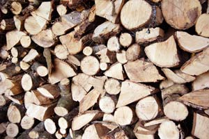 firewood seasoning in a stack