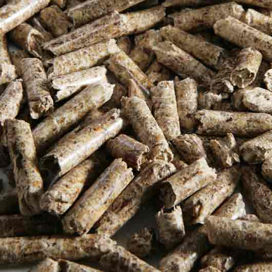 Types Of Wood Pellets ~ Wood junglekey image