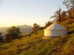 Yurt in field
